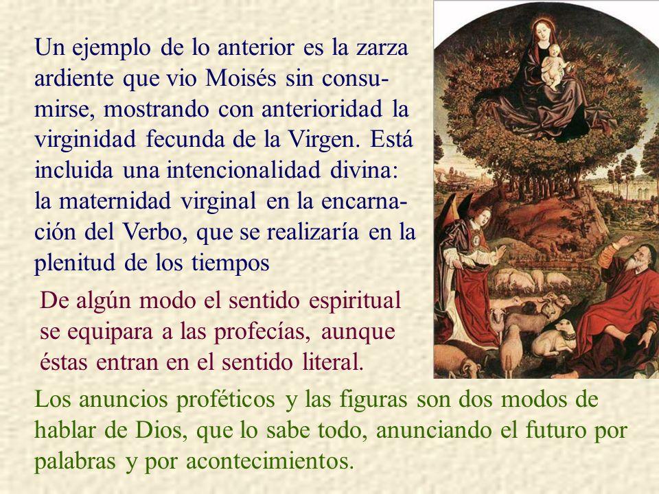 Un ejemplo de lo anterior es la zarza ardiente que vio Moisés sin consu- mirse, mostrando con anterioridad la virginidad fecunda de la Virgen. Está in