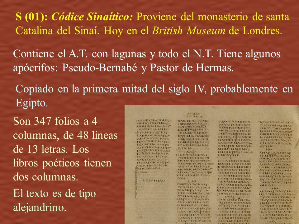 S (01): Códice Sinaítico: Proviene del monasterio de santa Catalina del Sinaí. Hoy en el British Museum de Londres. Contiene el A.T. con lagunas y tod