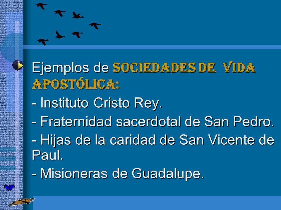 Ejemplos de sociedades de vida apostólica: Ejemplos de sociedades de vida apostólica: - Instituto Cristo Rey. - Fraternidad sacerdotal de San Pedro. -