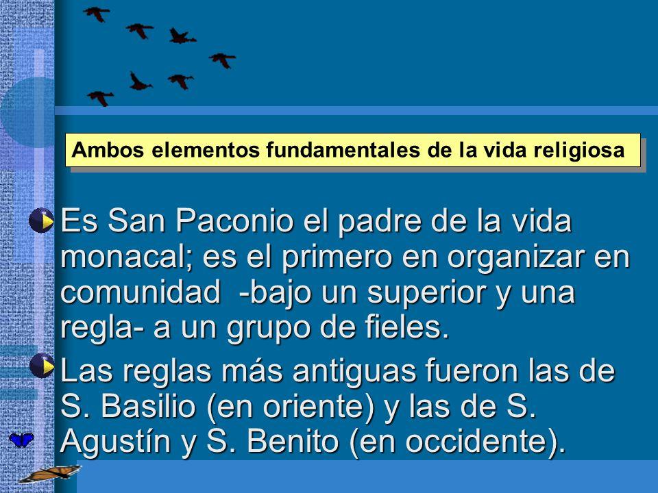 Es San Paconio el padre de la vida monacal; es el primero en organizar en comunidad -bajo un superior y una regla- a un grupo de fieles. Es San Paconi