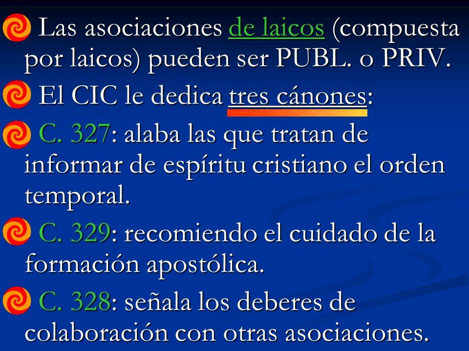 Las asociaciones de laicos (compuesta por laicos) pueden ser PUBL.