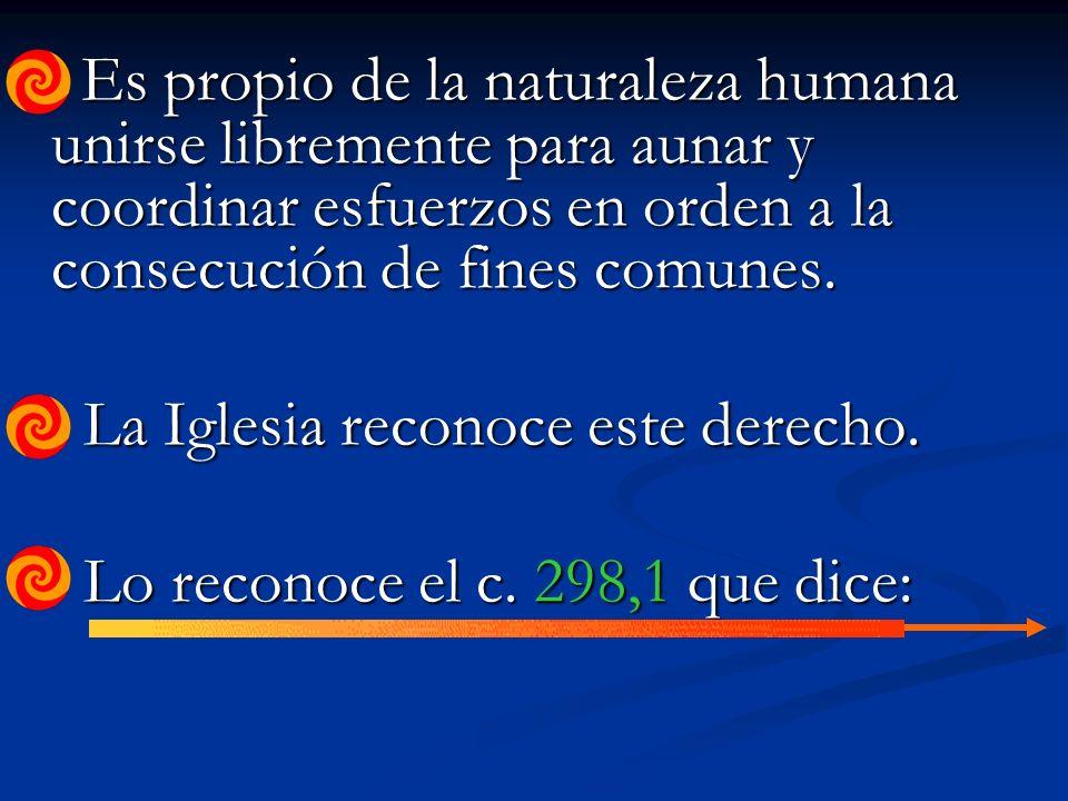 Es propio de la naturaleza humana unirse libremente para aunar y coordinar esfuerzos en orden a la consecución de fines comunes.