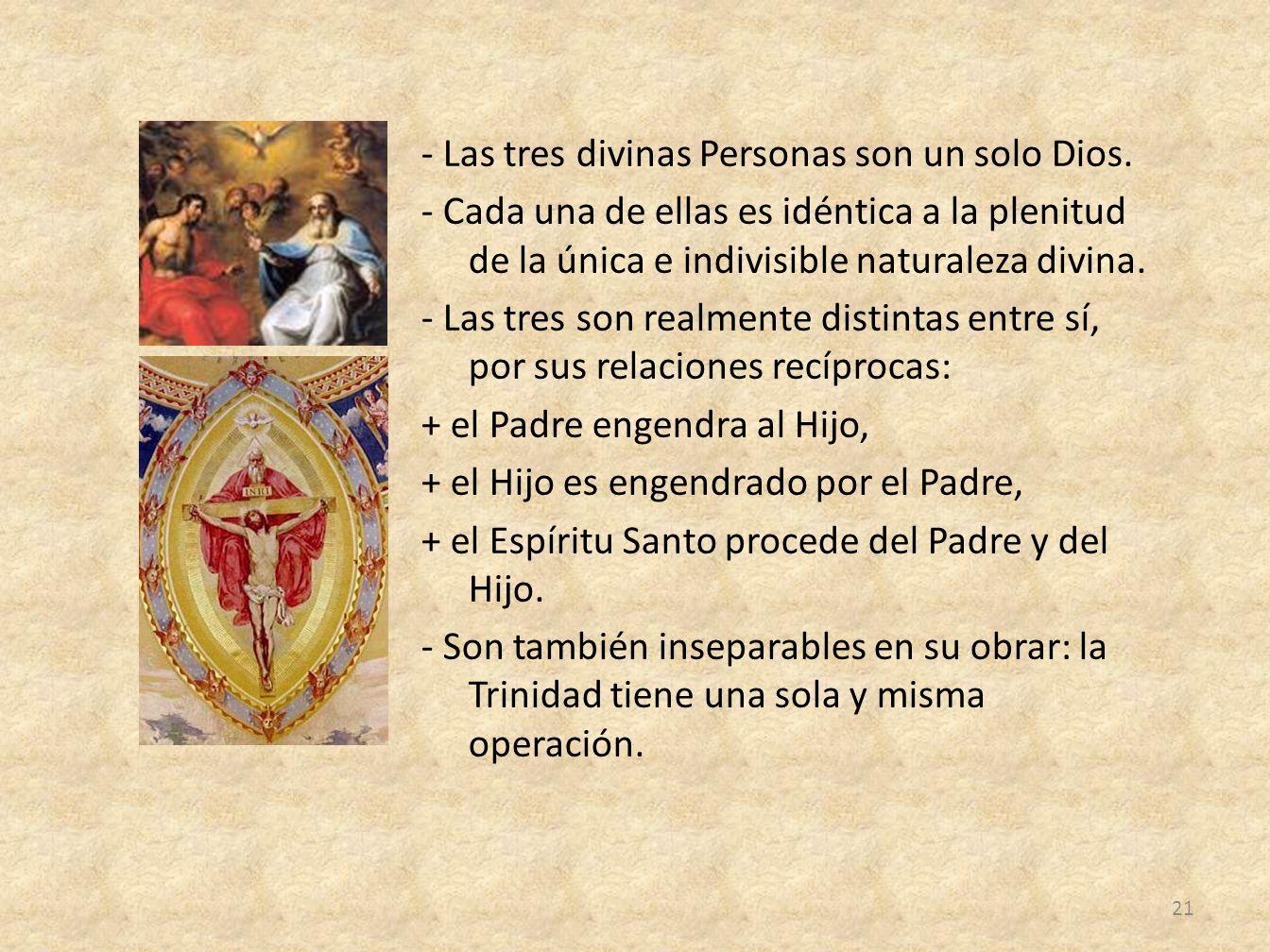 - Las tres divinas Personas son un solo Dios. - Cada una de ellas es idéntica a la plenitud de la única e indivisible naturaleza divina. - Las tres so