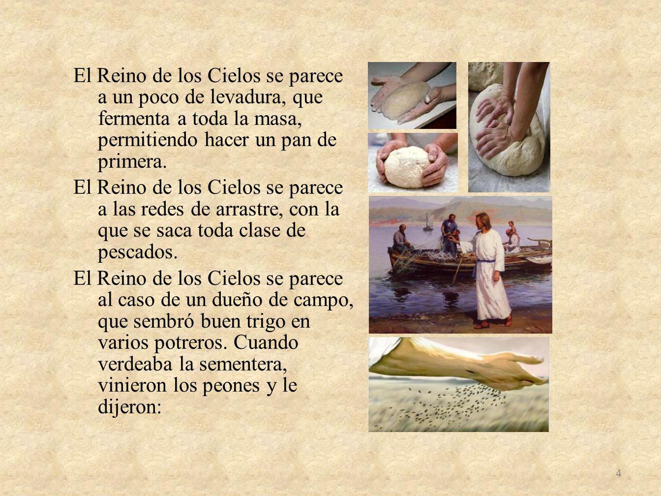 El Reino de los Cielos se parece a un poco de levadura, que fermenta a toda la masa, permitiendo hacer un pan de primera. El Reino de los Cielos se pa