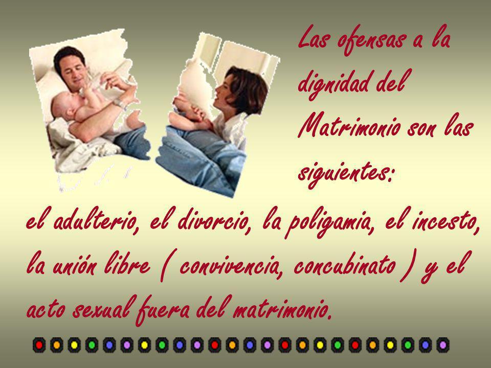 Las ofensas a la dignidad del Matrimonio son las siguientes: el adulterio, el divorcio, la poligamia, el incesto, la unión libre ( convivencia, concub