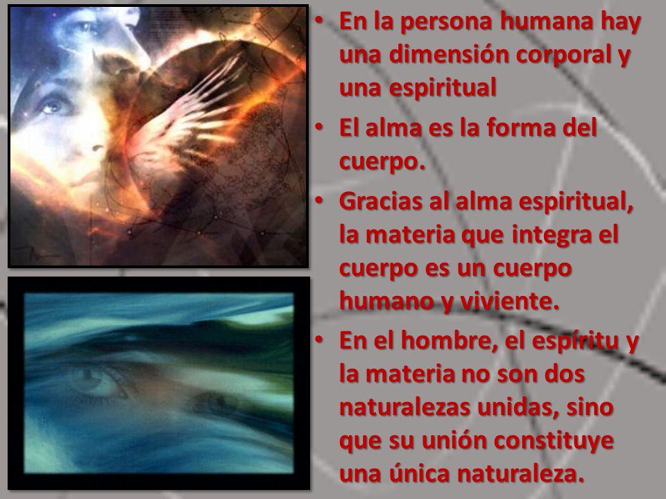 En la persona humana hay una dimensión corporal y una espiritual En la persona humana hay una dimensión corporal y una espiritual El alma es la forma