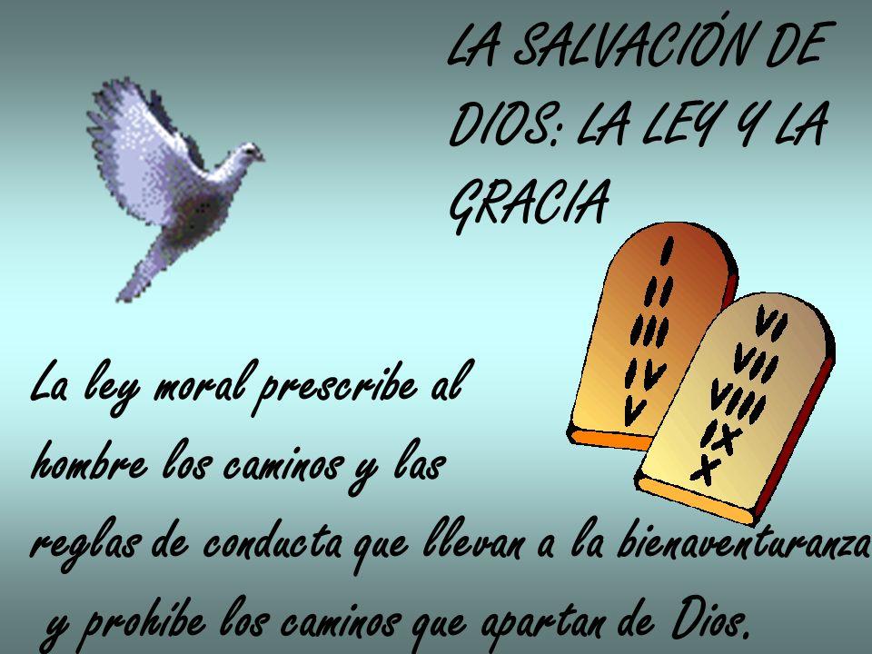 LA SALVACIÓN DE DIOS: LA LEY Y LA GRACIA La ley moral prescribe al hombre los caminos y las reglas de conducta que llevan a la bienaventuranza y prohíbe los caminos que apartan de Dios.