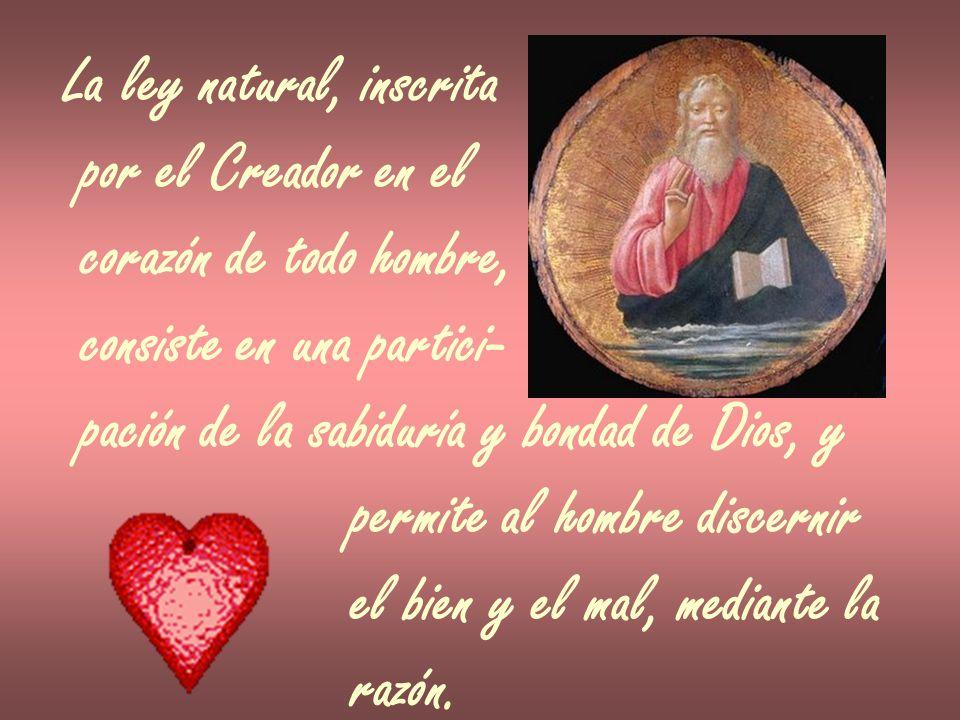 La ley natural, inscrita por el Creador en el corazón de todo hombre, consiste en una partici- pación de la sabiduría y bondad de Dios, y permite al h
