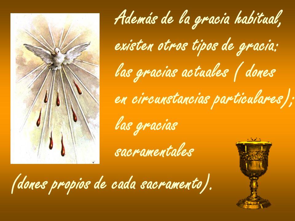 Además de la gracia habitual, existen otros tipos de gracia: las gracias actuales ( dones en circunstancias particulares); las gracias sacramentales (dones propios de cada sacramento).