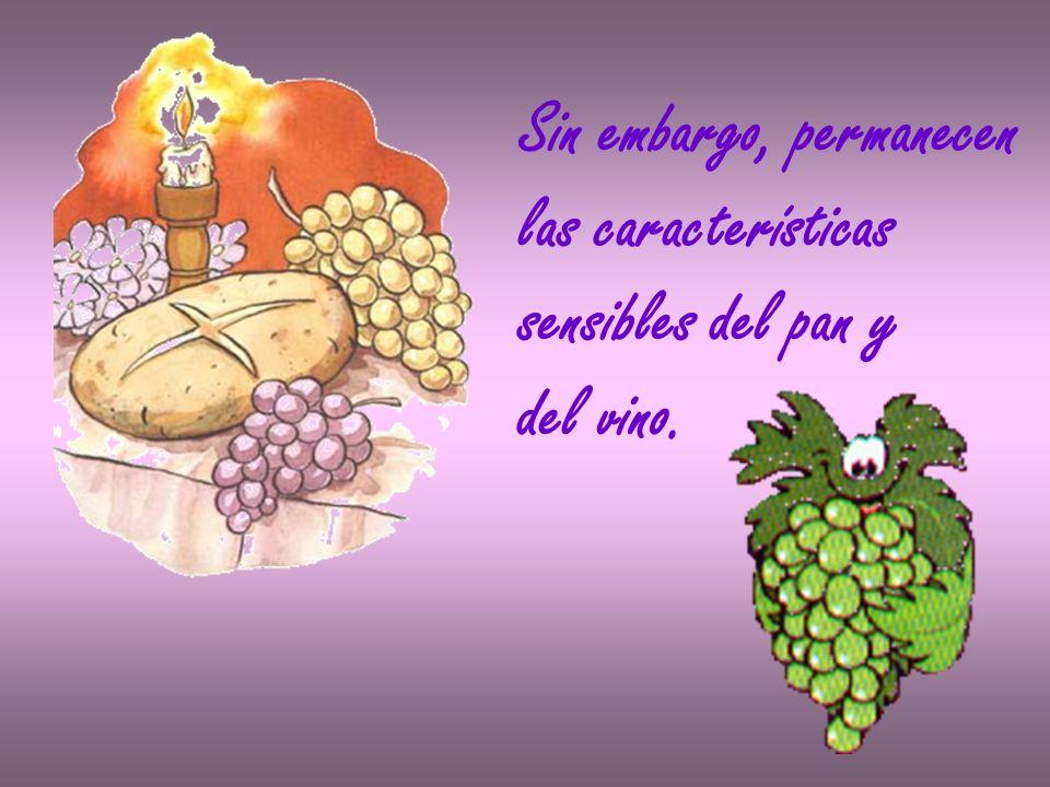 Sin embargo, permanecen las características sensibles del pan y del vino.