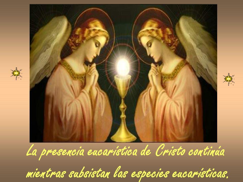 La presencia eucarística de Cristo continúa mientras subsistan las especies eucarísticas.