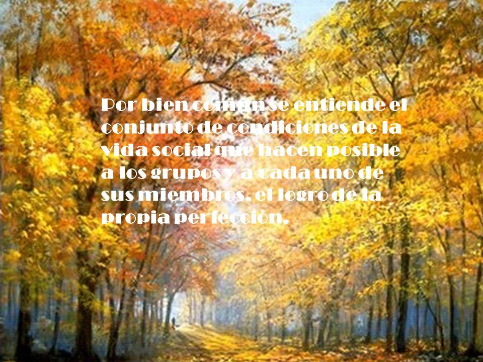 El bien común supone: el res- peto y la promoción de los de- rechos fundamentales de la persona.