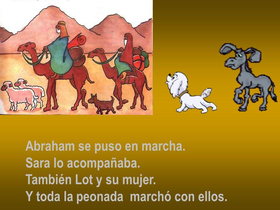 Iban montados en dromedarios y camellos.Algunos detrás arreando la hacienda.
