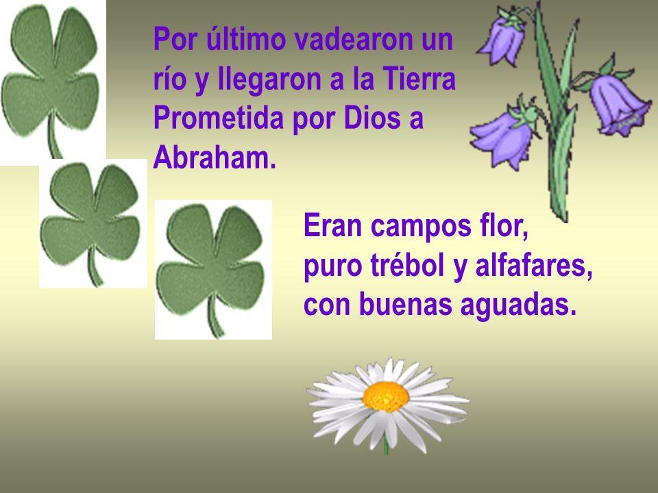 Por último vadearon un río y llegaron a la Tierra Prometida por Dios a Abraham.