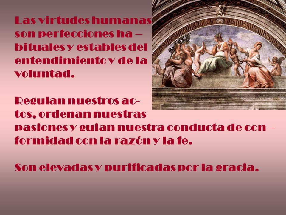 Las virtudes humanas son perfecciones ha – bituales y estables del entendimiento y de la voluntad. Regulan nuestros ac- tos, ordenan nuestras pasiones