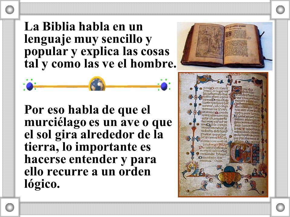 La Biblia habla en un lenguaje muy sencillo y popular y explica las cosas tal y como las ve el hombre. Por eso habla de que el murciélago es un ave o