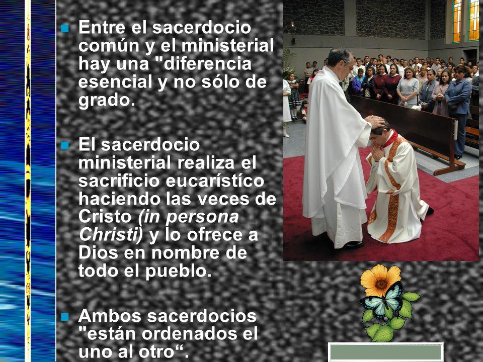n Entre el sacerdocio común y el ministerial hay una