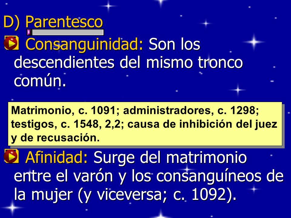 D) Parentesco Consanguinidad: Son los descendientes del mismo tronco común. Consanguinidad: Son los descendientes del mismo tronco común. Afinidad: Su