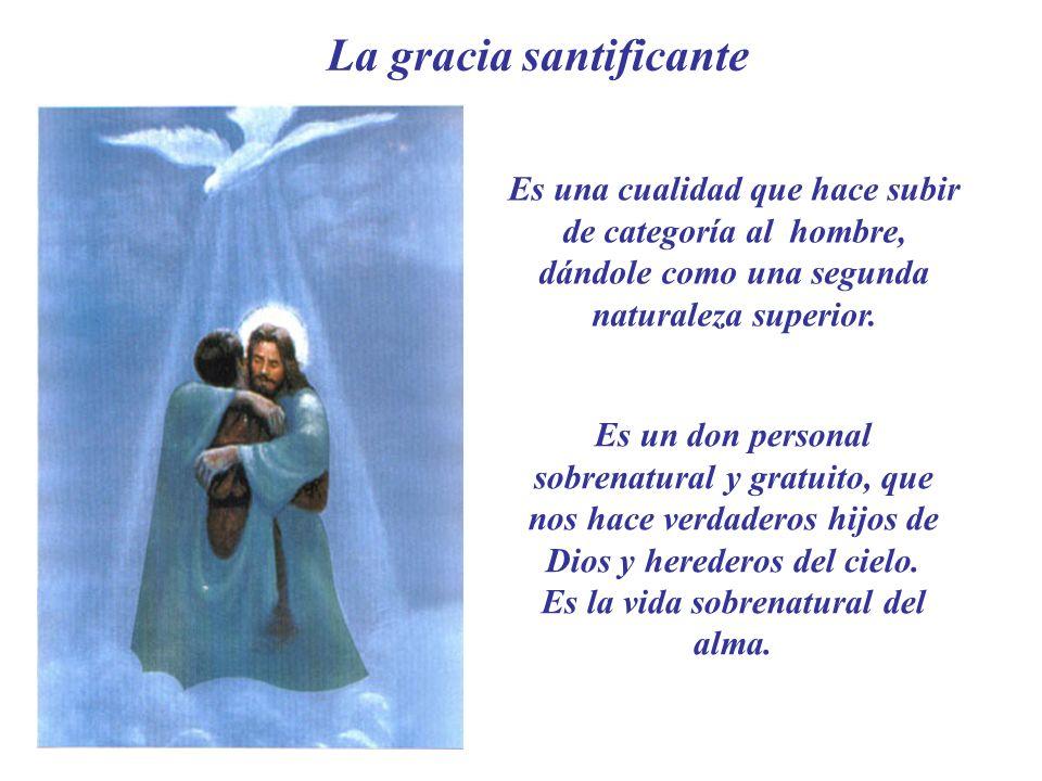 La gracia santificante Es una cualidad que hace subir de categoría al hombre, dándole como una segunda naturaleza superior.