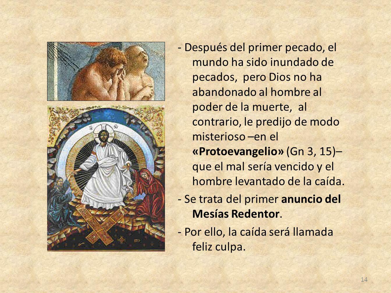 - Después del primer pecado, el mundo ha sido inundado de pecados, pero Dios no ha abandonado al hombre al poder de la muerte, al contrario, le predij