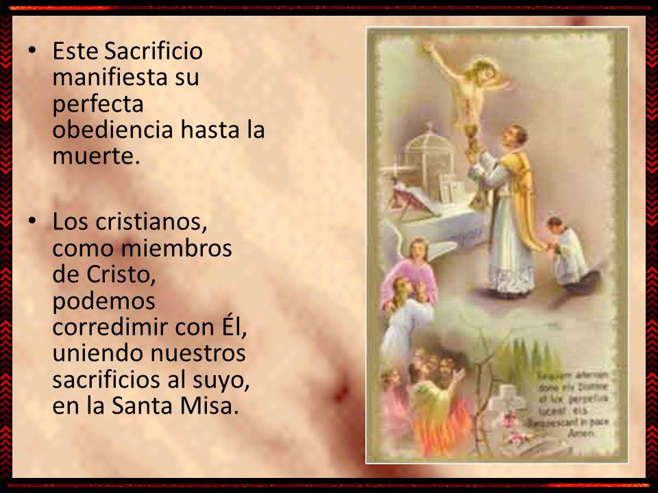 Este Sacrificio manifiesta su perfecta obediencia hasta la muerte. Los cristianos, como miembros de Cristo, podemos corredimir con Él, uniendo nuestro