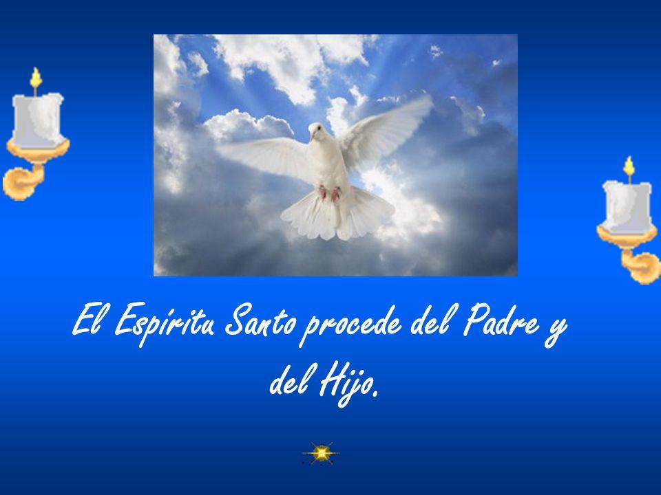 El Espíritu Santo procede del Padre y del Hijo.