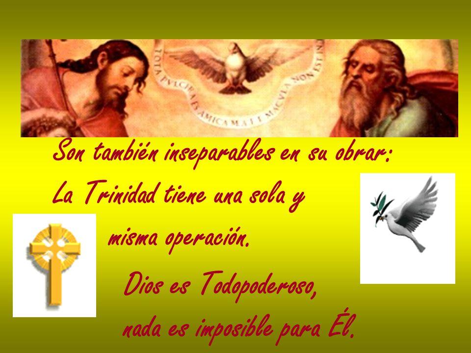 Son también inseparables en su obrar: La Trinidad tiene una sola y misma operación. Dios es Todopoderoso, nada es imposible para Él.