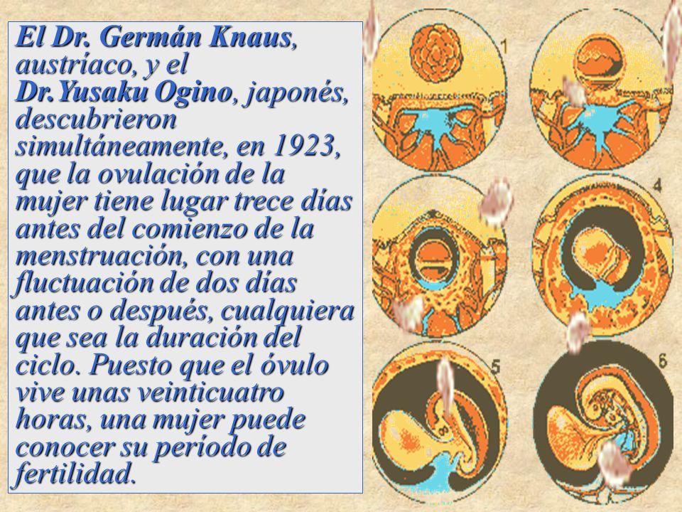 El Dr. Germán Knaus, austríaco, y el Dr.Yusaku Ogino, japonés, descubrieron simultáneamente, en 1923, que la ovulación de la mujer tiene lugar trece d