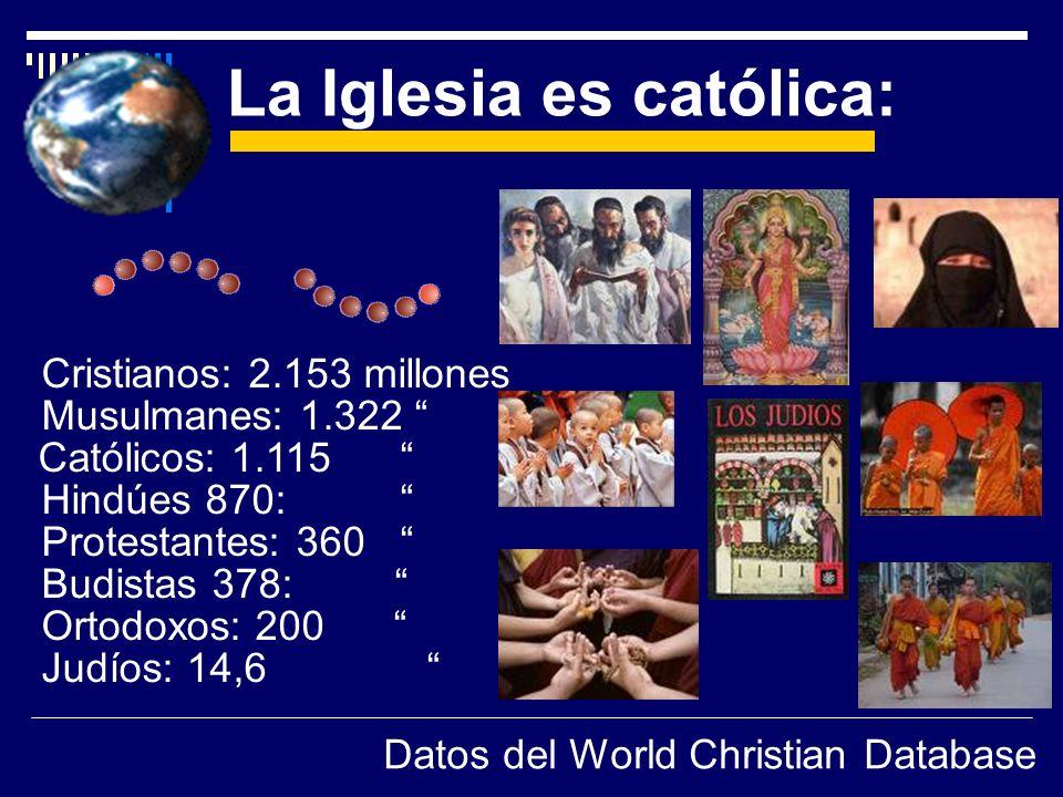 Cristianos: 2.153 millones Musulmanes: 1.322 Católicos: 1.115 Hindúes 870: Protestantes: 360 Budistas 378: Ortodoxos: 200 Judíos: 14,6 La Iglesia es c