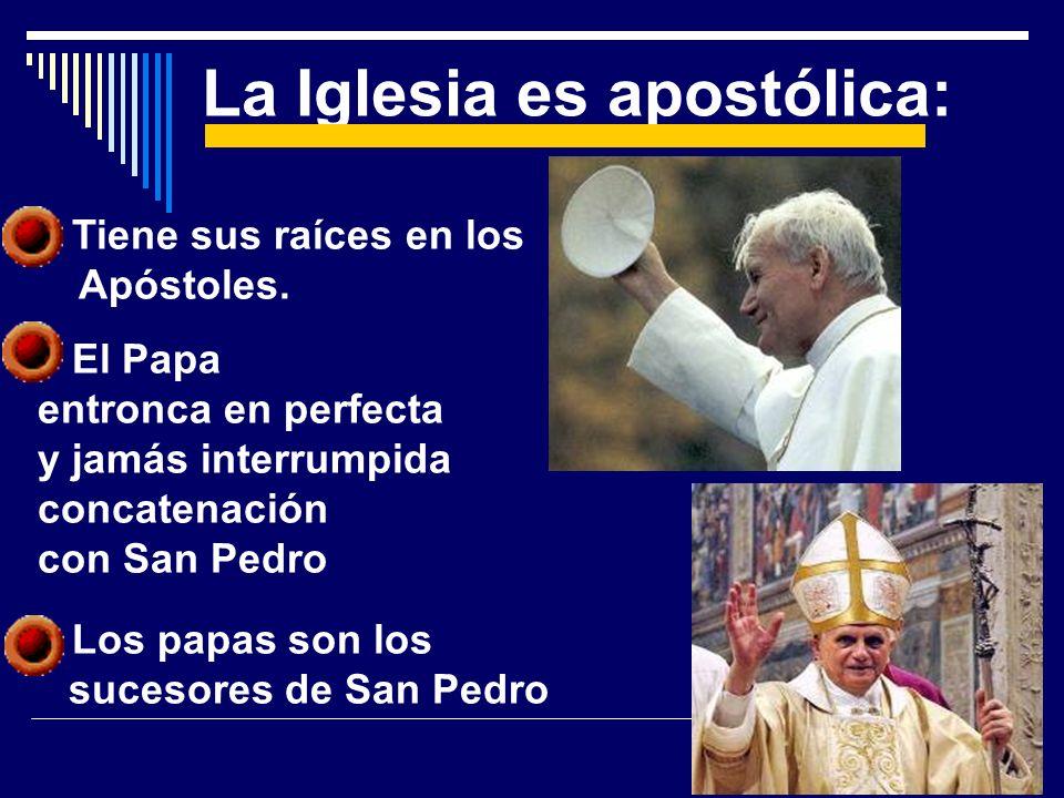 Tiene sus raíces en los Apóstoles. El Papa entronca en perfecta y jamás interrumpida concatenación con San Pedro Los papas son los sucesores de San Pe