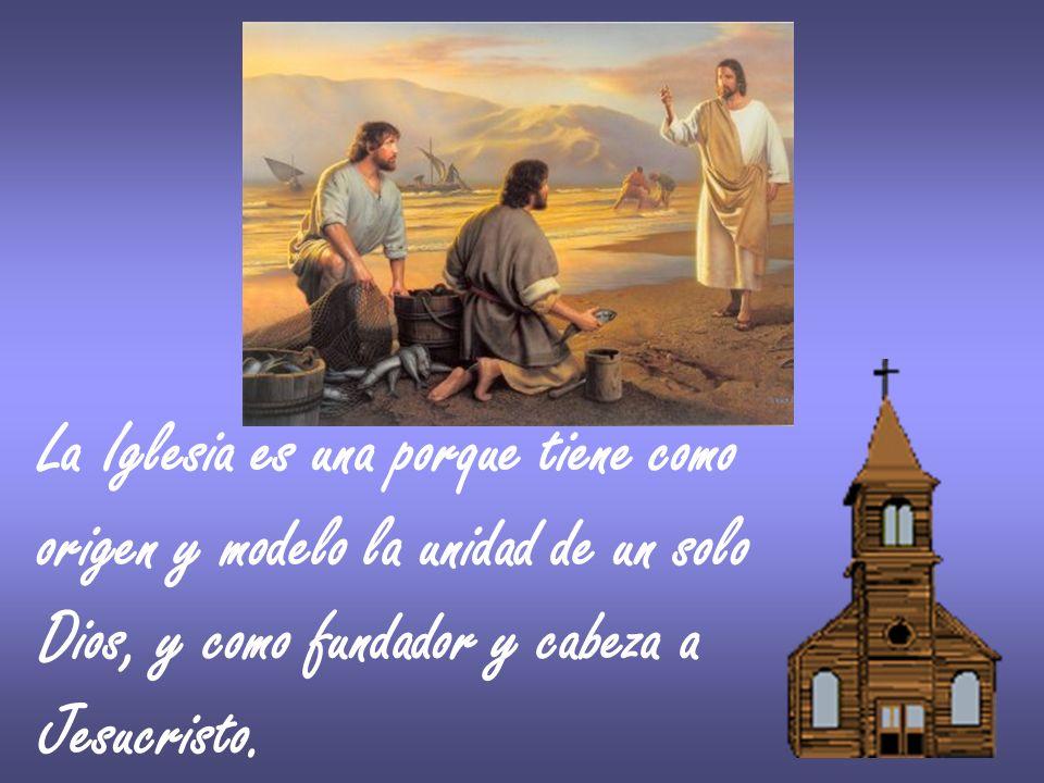 La Iglesia es una porque tiene como origen y modelo la unidad de un solo Dios, y como fundador y cabeza a Jesucristo.