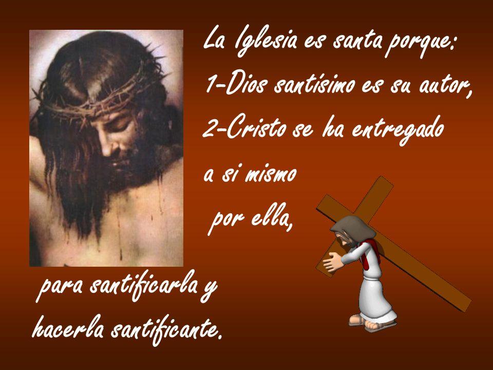 La Iglesia es santa porque: 1-Dios santísimo es su autor, 2-Cristo se ha entregado a si mismo por ella, para santificarla y hacerla santificante.