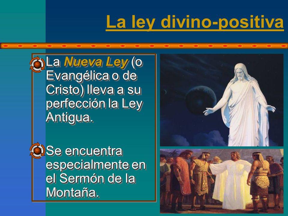 La ley divino-positiva No sólo enseña el camino...