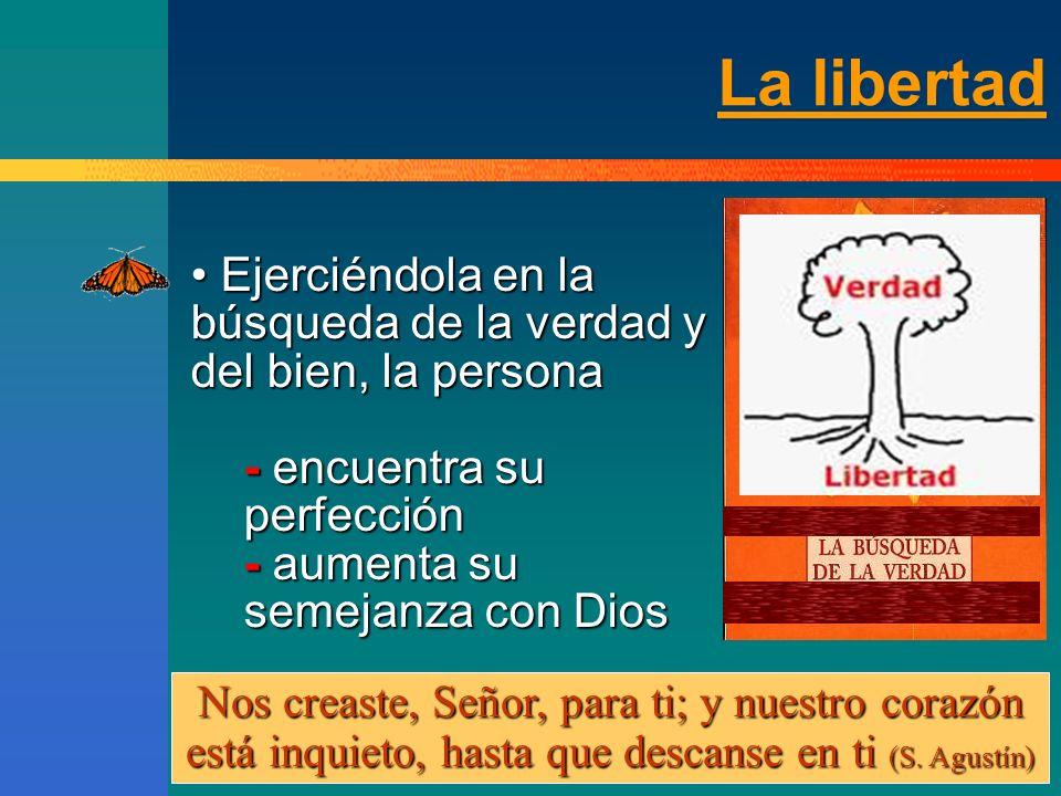 La ley moral natural «Dios orienta a los hombres NO desde fuera, mediante las leyes inmutables de la naturaleza física, sino NO desde fuera, mediante las leyes inmutables de la naturaleza física, sino desde dentro, mediante la razón que, conociendo con su luz natural la ley eterna de Dios, es capaz de indicar al hombre la justa dirección de su libre actuación» (V.S., 43) desde dentro, mediante la razón que, conociendo con su luz natural la ley eterna de Dios, es capaz de indicar al hombre la justa dirección de su libre actuación» (V.S., 43) «Dios orienta a los hombres NO desde fuera, mediante las leyes inmutables de la naturaleza física, sino NO desde fuera, mediante las leyes inmutables de la naturaleza física, sino desde dentro, mediante la razón que, conociendo con su luz natural la ley eterna de Dios, es capaz de indicar al hombre la justa dirección de su libre actuación» (V.S., 43) desde dentro, mediante la razón que, conociendo con su luz natural la ley eterna de Dios, es capaz de indicar al hombre la justa dirección de su libre actuación» (V.S., 43)