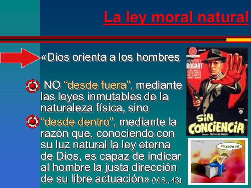 La ley moral natural Se llama ley eterna al plan de la Sabiduría de Dios para conducir toda la creación de acuerdo con la naturaleza de cada criatura a su fin.