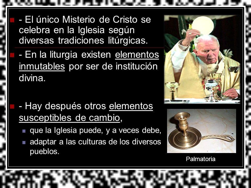 - El único Misterio de Cristo se celebra en la Iglesia según diversas tradiciones litúrgicas. - En la liturgia existen elementos inmutables por ser de