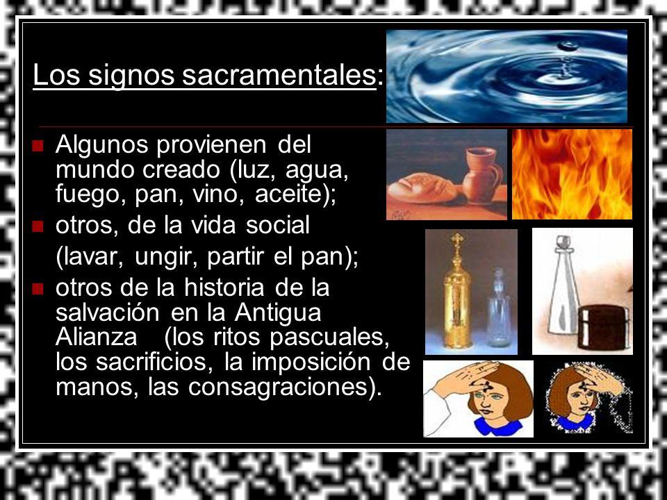 Los signos sacramentales: Algunos provienen del mundo creado (luz, agua, fuego, pan, vino, aceite); otros, de la vida social (lavar, ungir, partir el