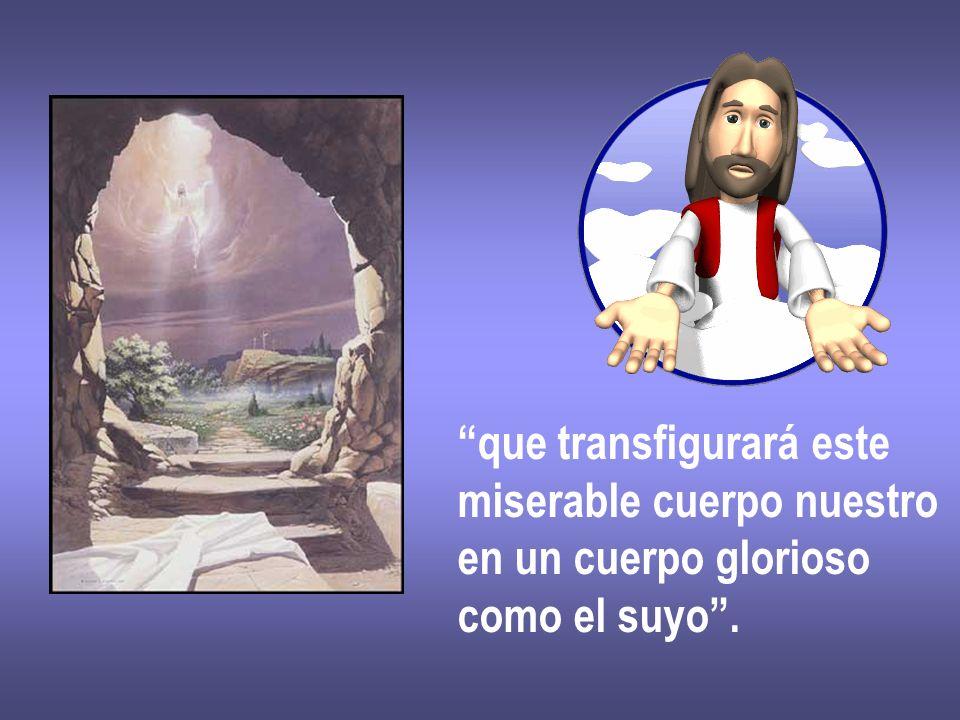 que transfigurará este miserable cuerpo nuestro en un cuerpo glorioso como el suyo.