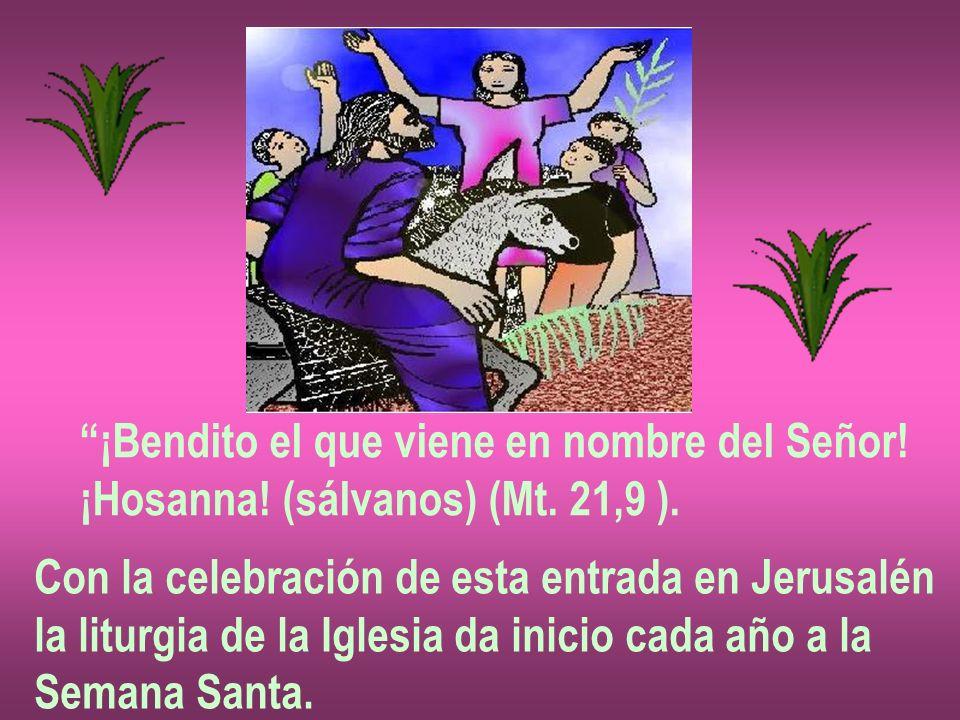 ¡Bendito el que viene en nombre del Señor! ¡Hosanna! (sálvanos) (Mt. 21,9 ). Con la celebración de esta entrada en Jerusalén la liturgia de la Iglesia