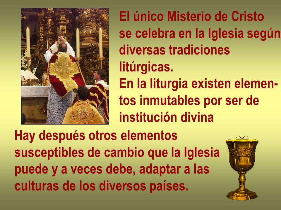 El único Misterio de Cristo se celebra en la Iglesia según diversas tradiciones litúrgicas. En la liturgia existen elemen- tos inmutables por ser de i