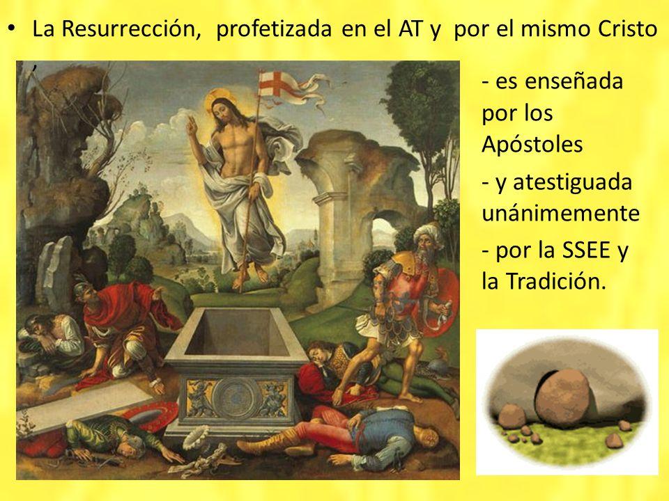 - es enseñada por los Apóstoles - y atestiguada unánimemente - por la SSEE y la Tradición. La Resurrección, profetizada en el AT y por el mismo Cristo