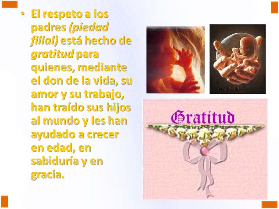 El respeto a los padres (piedad filial) está hecho de gratitud para quienes, mediante el don de la vida, su amor y su trabajo, han traído sus hijos al
