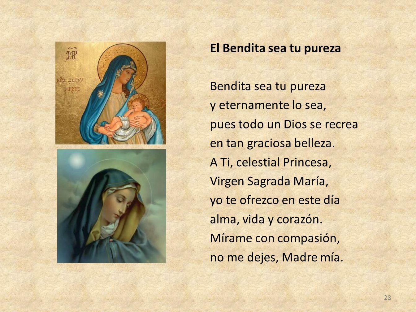 El Bendita sea tu pureza Bendita sea tu pureza y eternamente lo sea, pues todo un Dios se recrea en tan graciosa belleza.