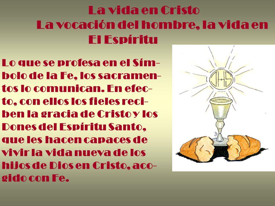 La vida en Cristo La vocación del hombre, la vida en El Espíritu Lo que se profesa en el Sím- bolo de la Fe, los sacramen- tos lo comunican. En efec-