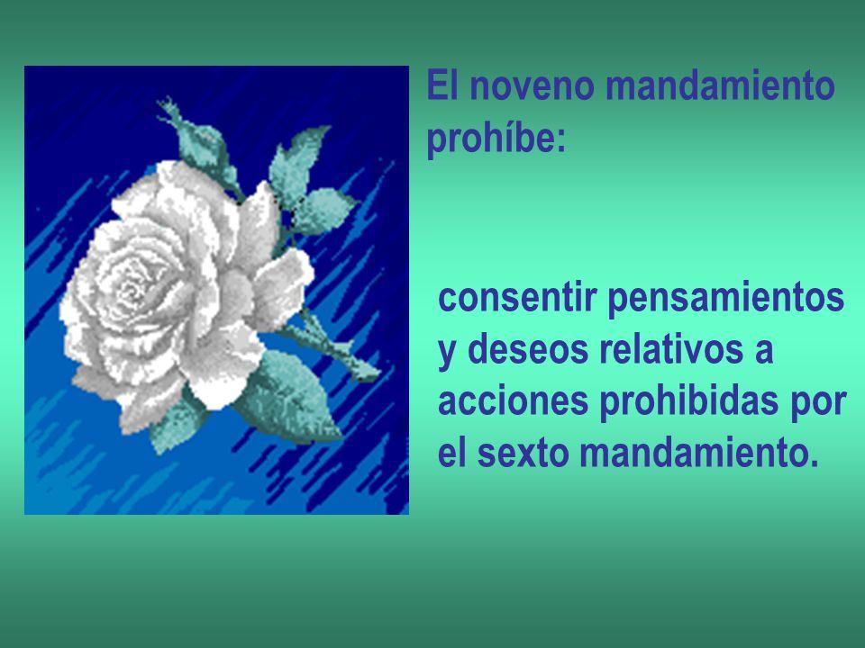 El noveno mandamiento prohíbe: consentir pensamientos y deseos relativos a acciones prohibidas por el sexto mandamiento.