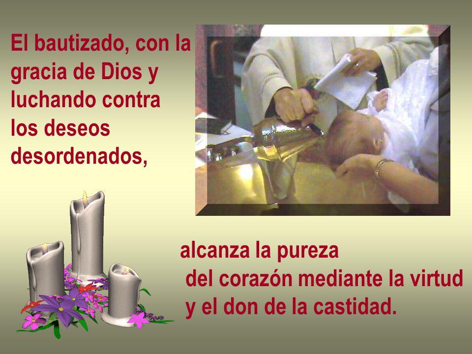 El bautizado, con la gracia de Dios y luchando contra los deseos desordenados, alcanza la pureza del corazón mediante la virtud y el don de la castida