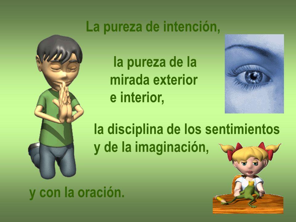La pureza de intención, la pureza de la mirada exterior e interior, la disciplina de los sentimientos y de la imaginación, y con la oración.