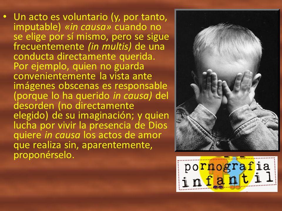 Un acto es voluntario (y, por tanto, imputable) «in causa» cuando no se elige por sí mismo, pero se sigue frecuentemente (in multis) de una conducta d