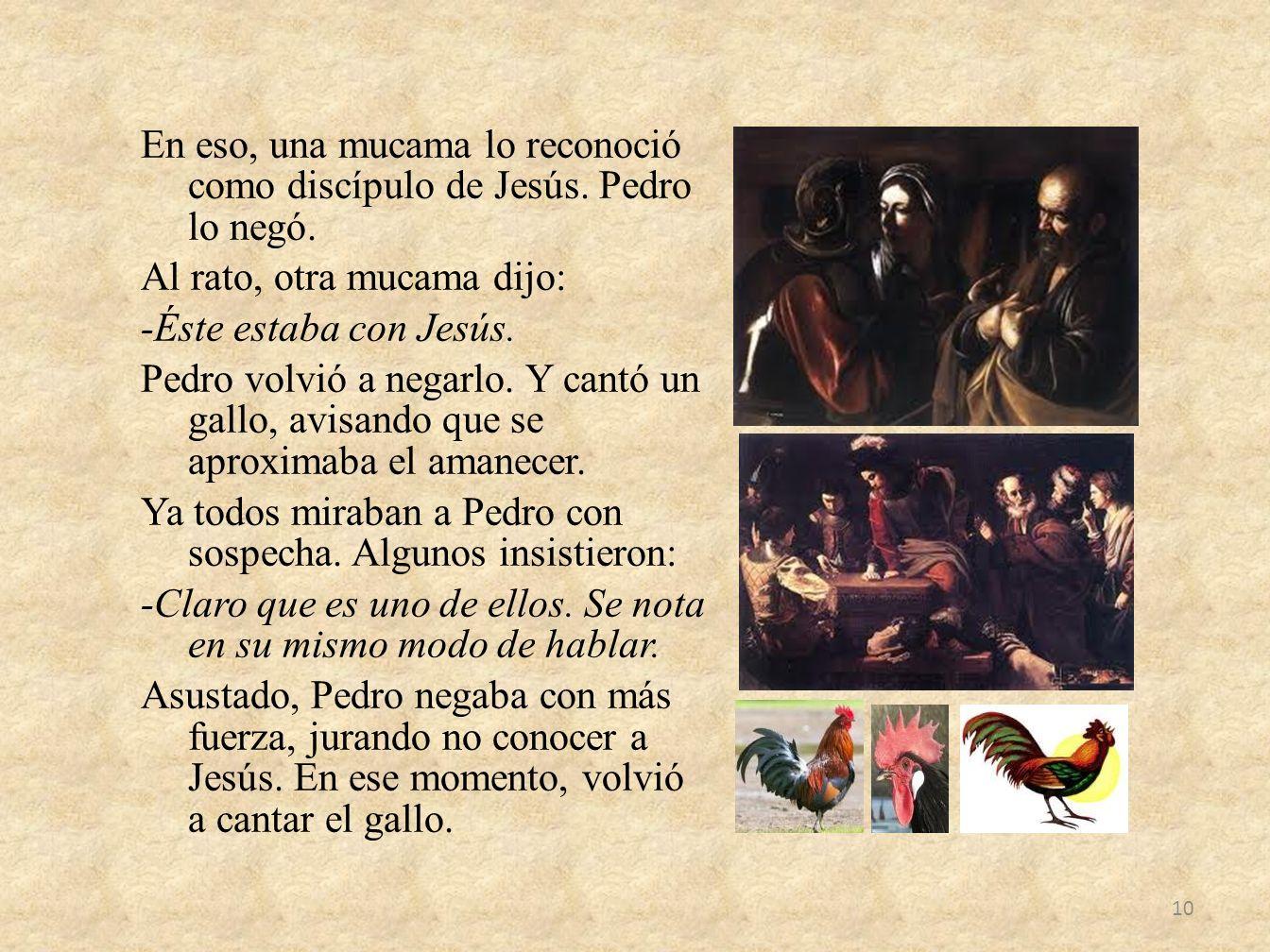 En eso, una mucama lo reconoció como discípulo de Jesús. Pedro lo negó. Al rato, otra mucama dijo: -Éste estaba con Jesús. Pedro volvió a negarlo. Y c