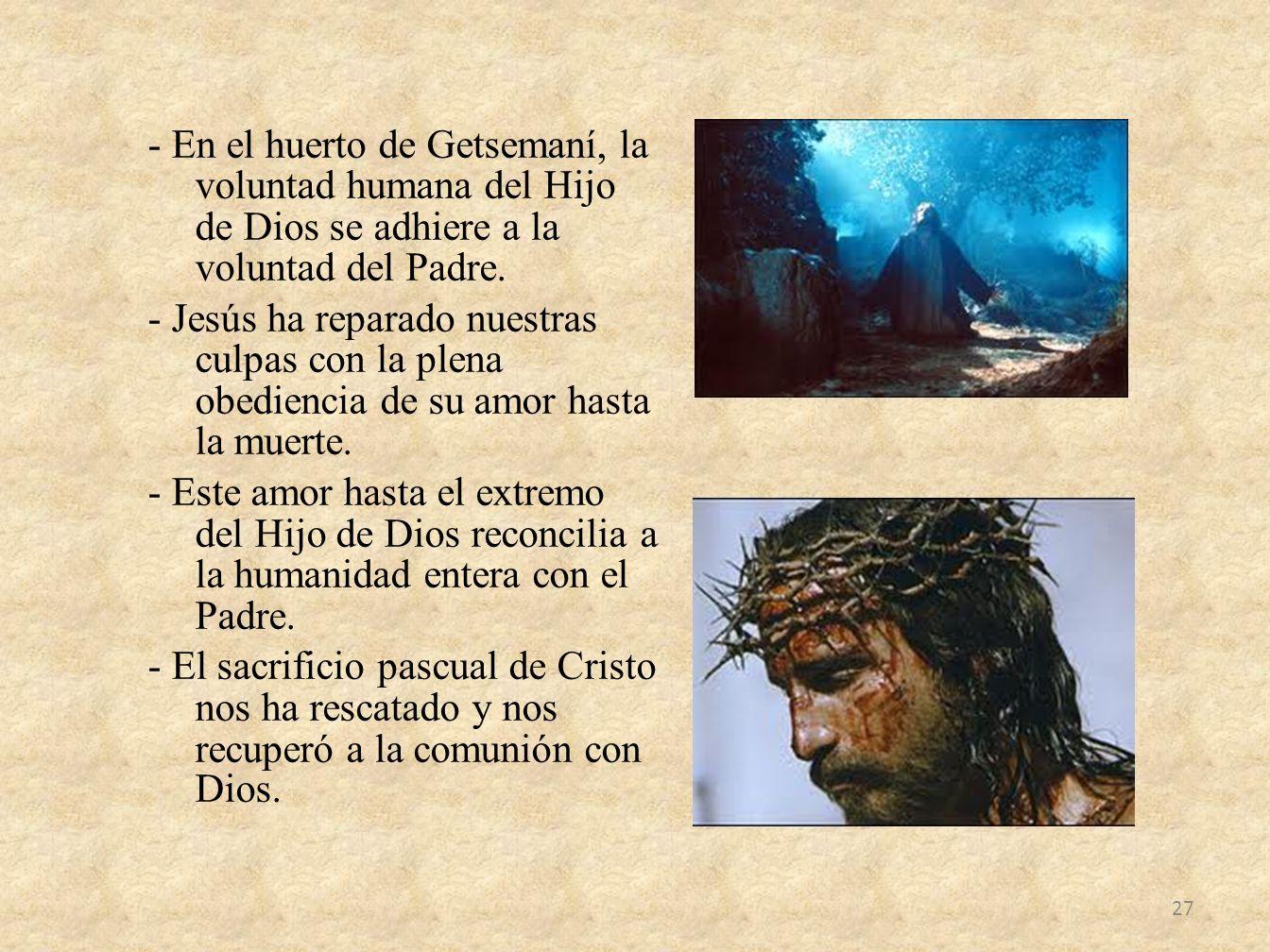 - En el huerto de Getsemaní, la voluntad humana del Hijo de Dios se adhiere a la voluntad del Padre. - Jesús ha reparado nuestras culpas con la plena